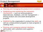 project management49
