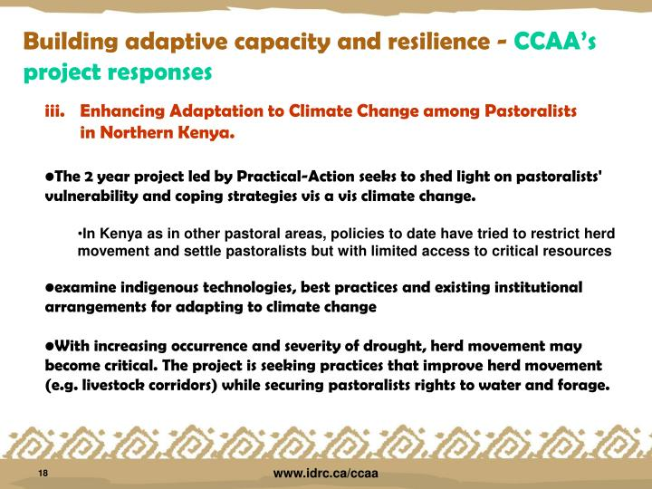 essay for climate change adaptation Essay: climate change a multitude of biologically significant environmental changes are projected to occur as a consequence of anthropogenic climate change (solomon et al, 2007) how will life and biodiversity on earth respond to the current and projected climate change.