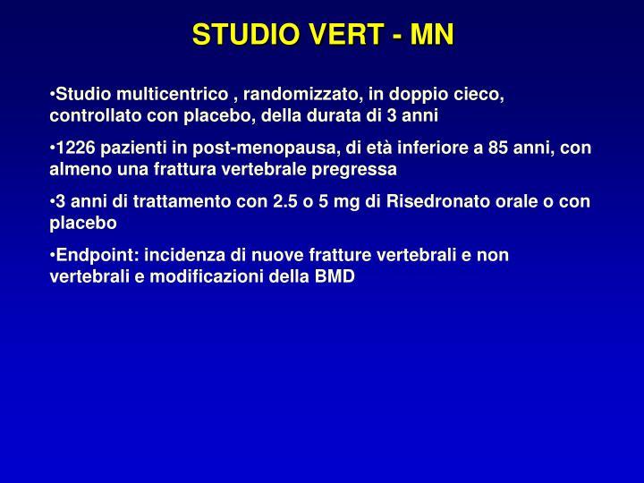 STUDIO VERT - MN
