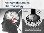methamphetamine pharmacology39