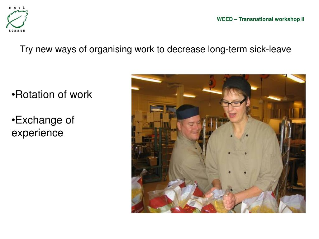 Try new ways of organising work to decrease long-term sick-leave