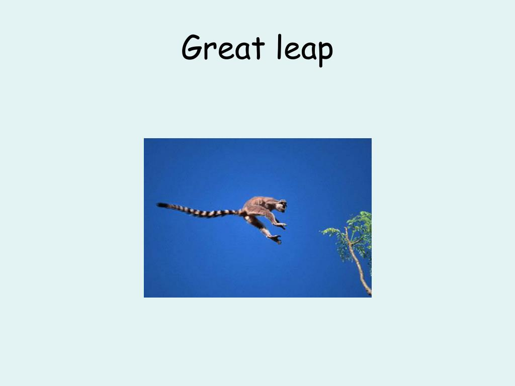 Great leap