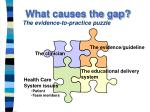 what causes the gap the evidence to practice puzzle