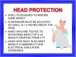 head protection25