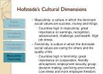 hofstede s cultural dimensions14