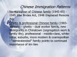 chinese immigration patterns66