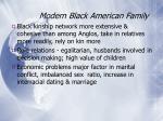 modern black american family29