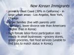 new korean immigrants
