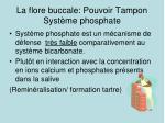 la flore buccale pouvoir tampon syst me phosphate