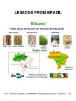 lessons from brazil1