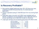 is recovery profitable36