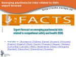 emerging psychosocial risks related to osh expert forecast13