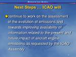 next steps icao will