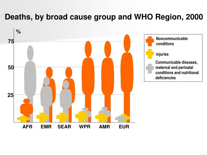 Deaths, by broad cause group and WHO Region,