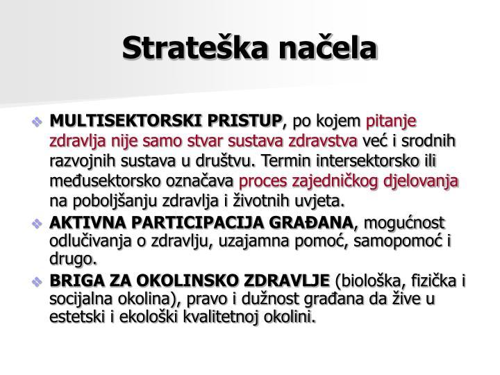 Strateška načela