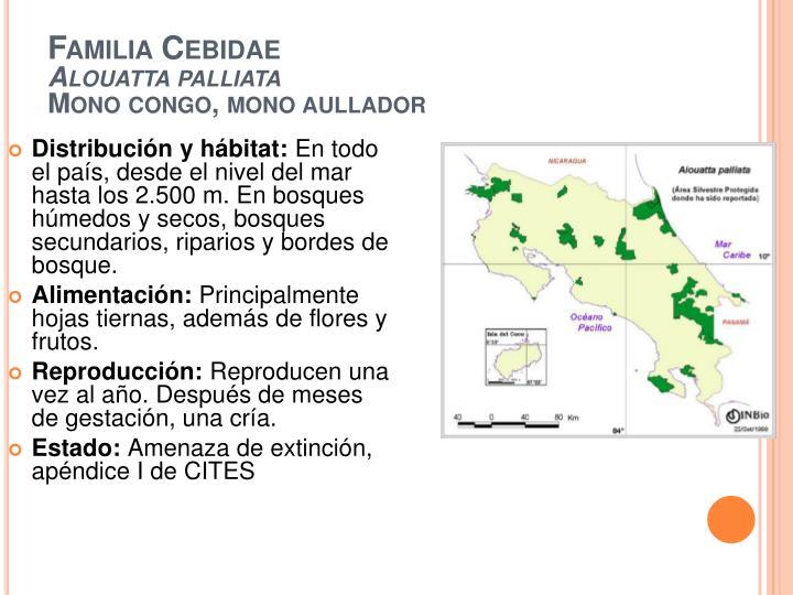 Distribución y hábitat: