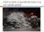 com a neve o quintal de casa vira um cart o postal