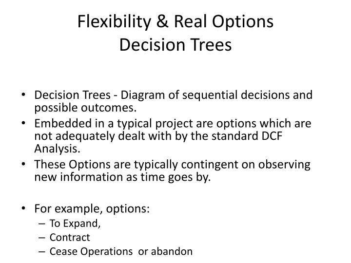 Flexibility & Real Options