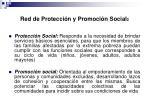 red de protecci n y promoci n social 2