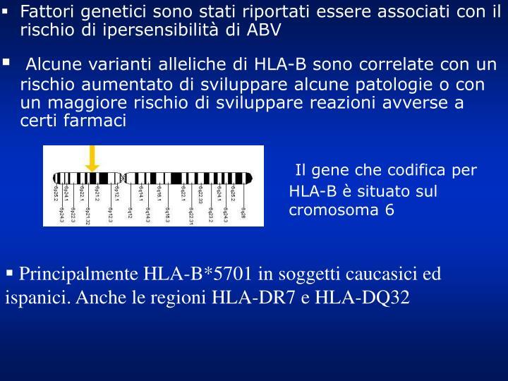 Fattori genetici sono stati riportati essere associati con il rischio di ipersensibilità di ABV