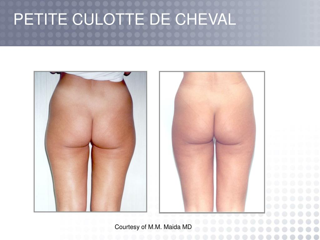 PETITE CULOTTE DE CHEVAL