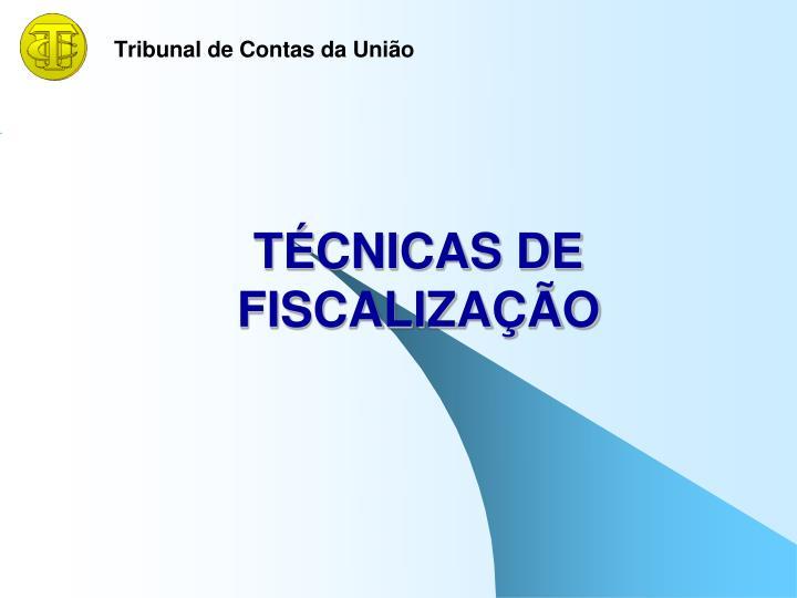 TÉCNICAS DE FISCALIZAÇÃO