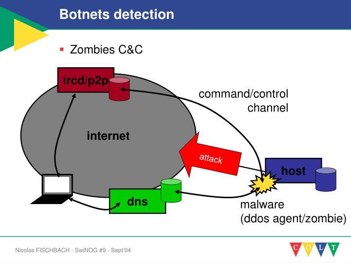 Botnets detection