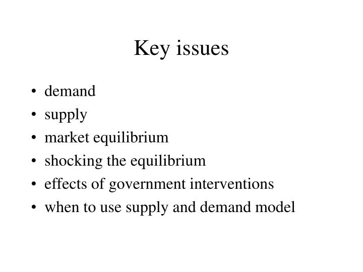 key issues n.