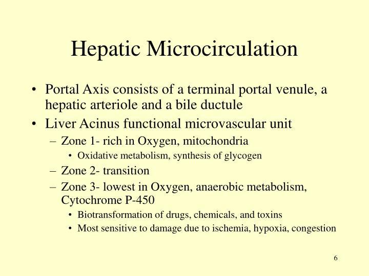 Hepatic Microcirculation