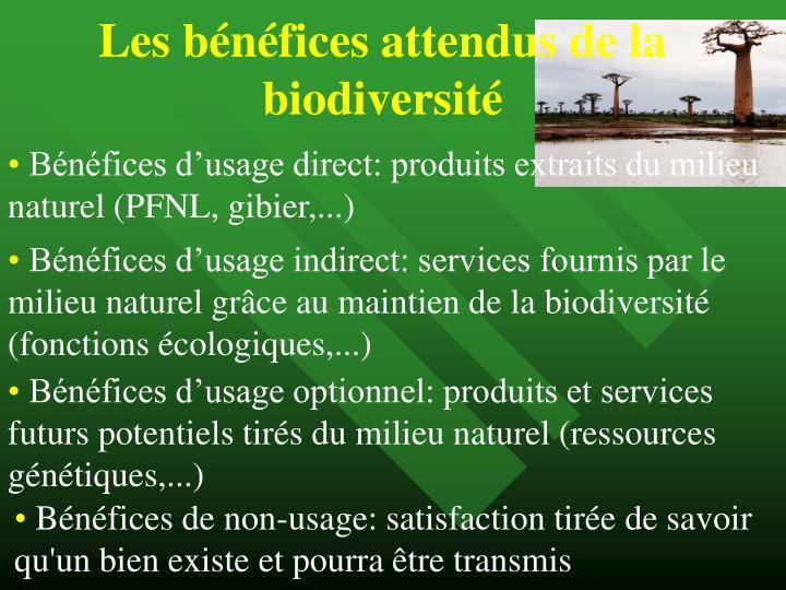 Les bénéfices attendus de la biodiversité