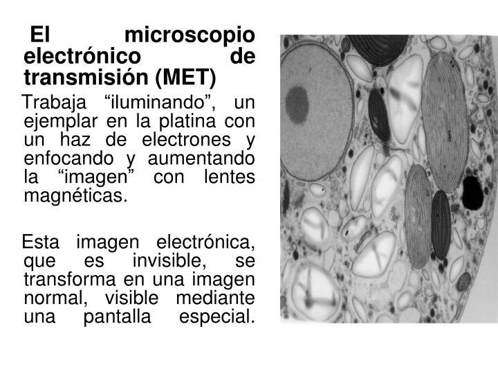 El microscopio electrónico de transmisión (MET)