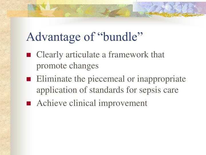 "Advantage of ""bundle"""