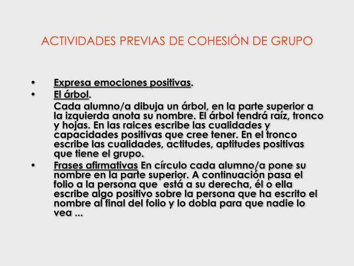 ACTIVIDADES PREVIAS DE COHESIÓN DE GRUPO