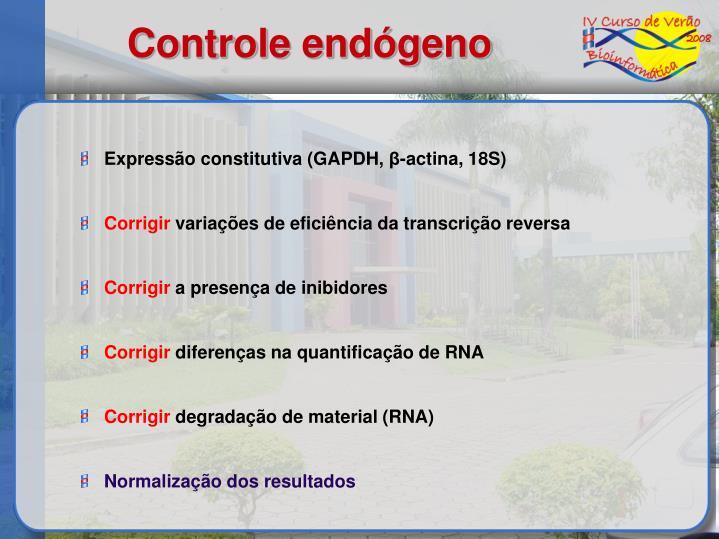 Controle endógeno
