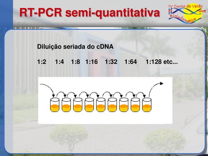 RT-PCR semi-quantitativa