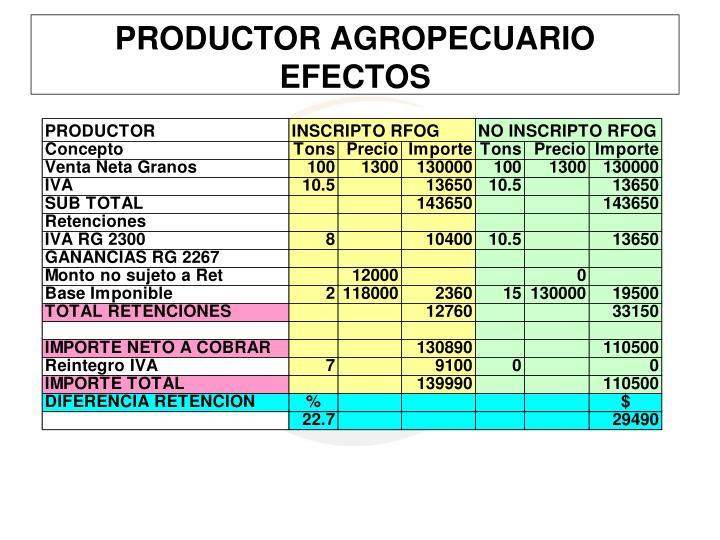 PRODUCTOR AGROPECUARIO