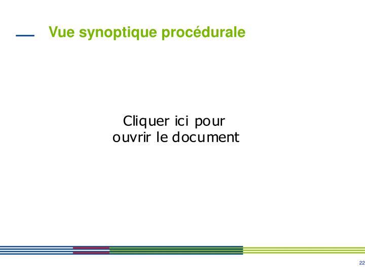 Vue synoptique procédurale