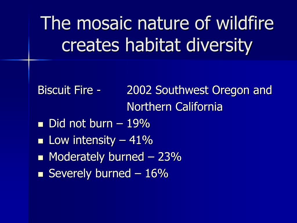 The mosaic nature of wildfire creates habitat diversity