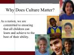 why does culture matter