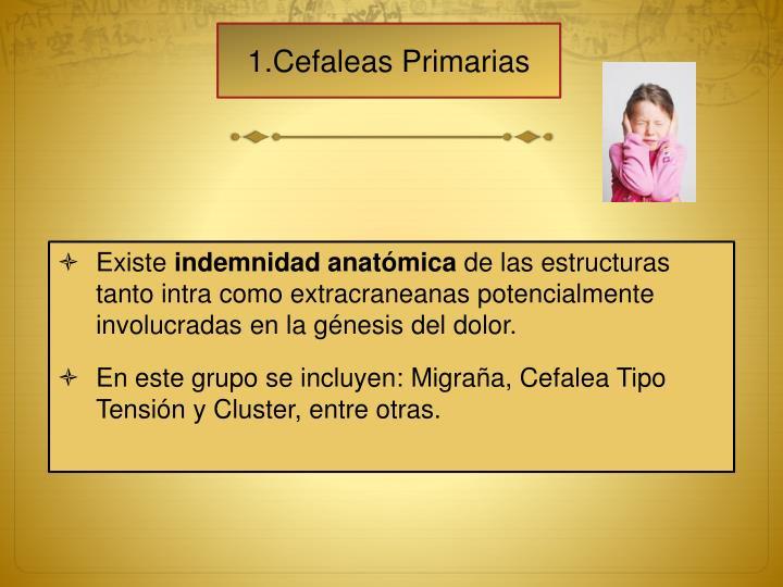 1.Cefaleas Primarias