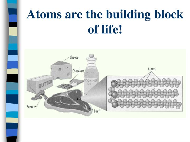 Atoms are the building block of life!