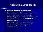 komisja europejska14