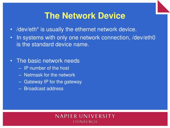 The Network Device