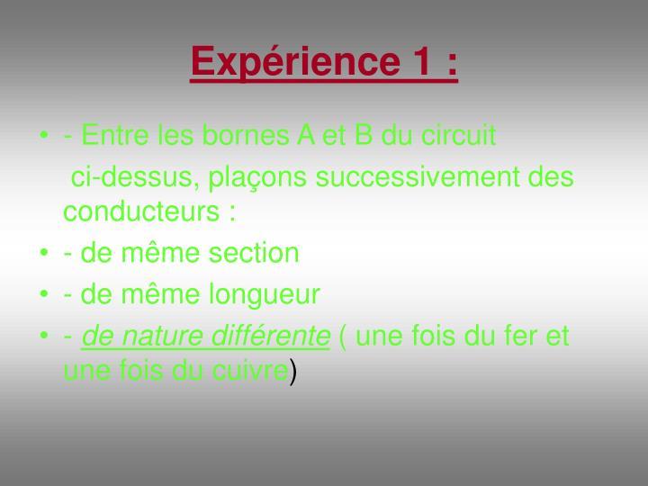 Expérience 1 :