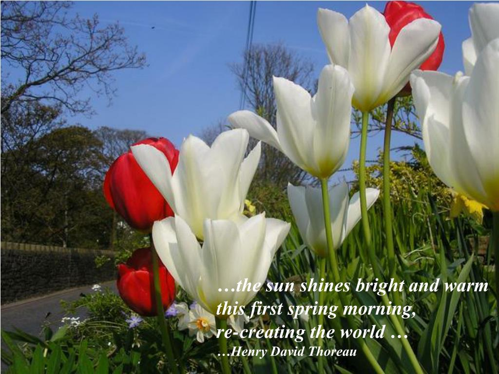 …the sun shines bright and warm