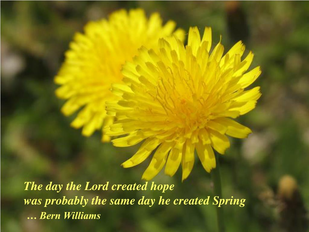 The day the Lord created hope
