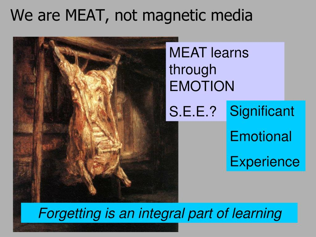 We are MEAT, not magnetic media