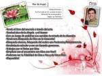 flor de irup1