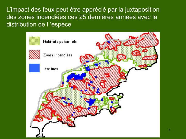L'impact des feux peut être apprécié par la juxtaposition des zones incendiées ces 25 dernières années avec la distribution de l'espèce