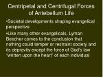centripetal and centrifugal forces of antebellum life4